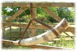 orkhorngroesseviermithornhalterung.jpg