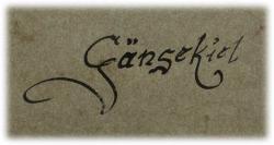 gaensekielschriftbild.jpg