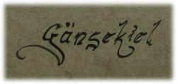 gaensekielschriftbild2.jpg