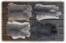 kaninchenfellegrautoene.jpg