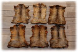 opossumnappafellecognac.jpg