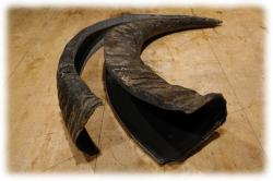 wasserbueffelhornbackstripplusrest02.jpg