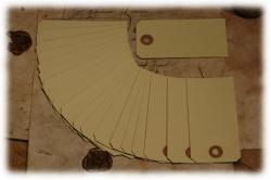 papierschildchengross.jpg