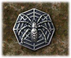 spinnenbuckleasi.jpg