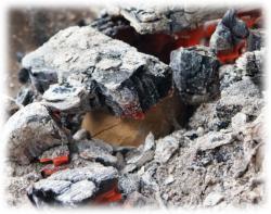 kartoffelinglutvergraben.jpg