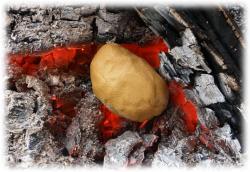 schlammkartoffelninderglut.jpg