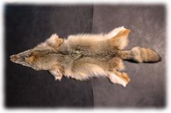 coyotenfelleinzelstueckb.jpg