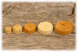 eichenholzspielsteinegeoeltgroessenvergleich.jpg