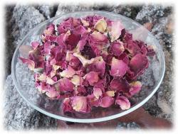 rosenblueten.jpg