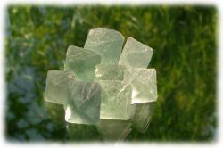 fluoritoktaeder12cmaufglasplatte.jpg
